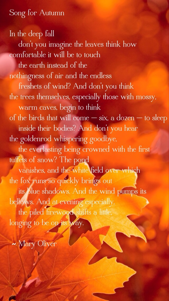 Mary Oliver Song for Autumn