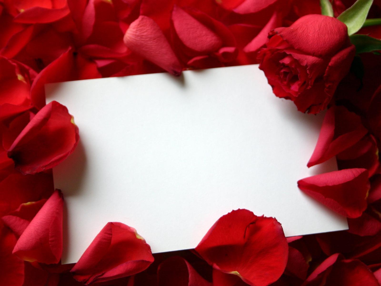 roses_love_letter-1600x1200